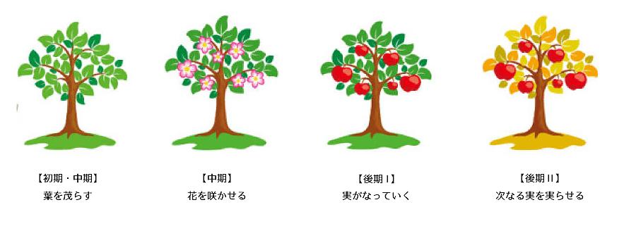 キャリア研修イメージ 4つの木